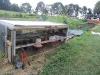 chickentractorbeanbeetle